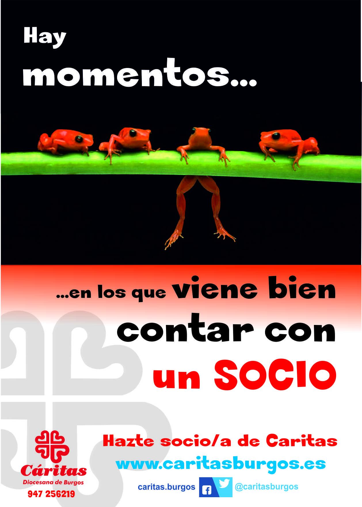 CARTREL SOCIOS