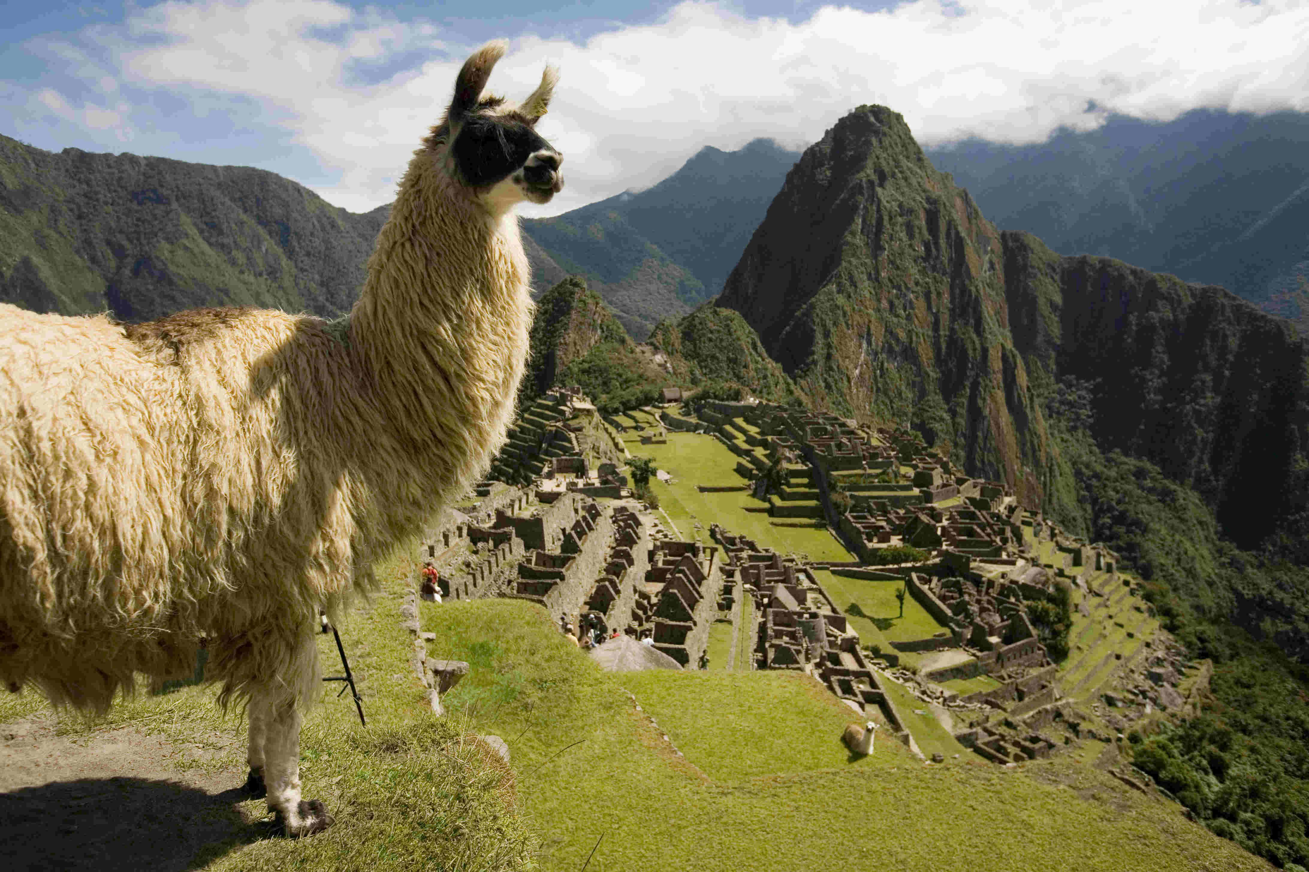 ciudadela-de-machu-picchu-orellana-expeditions