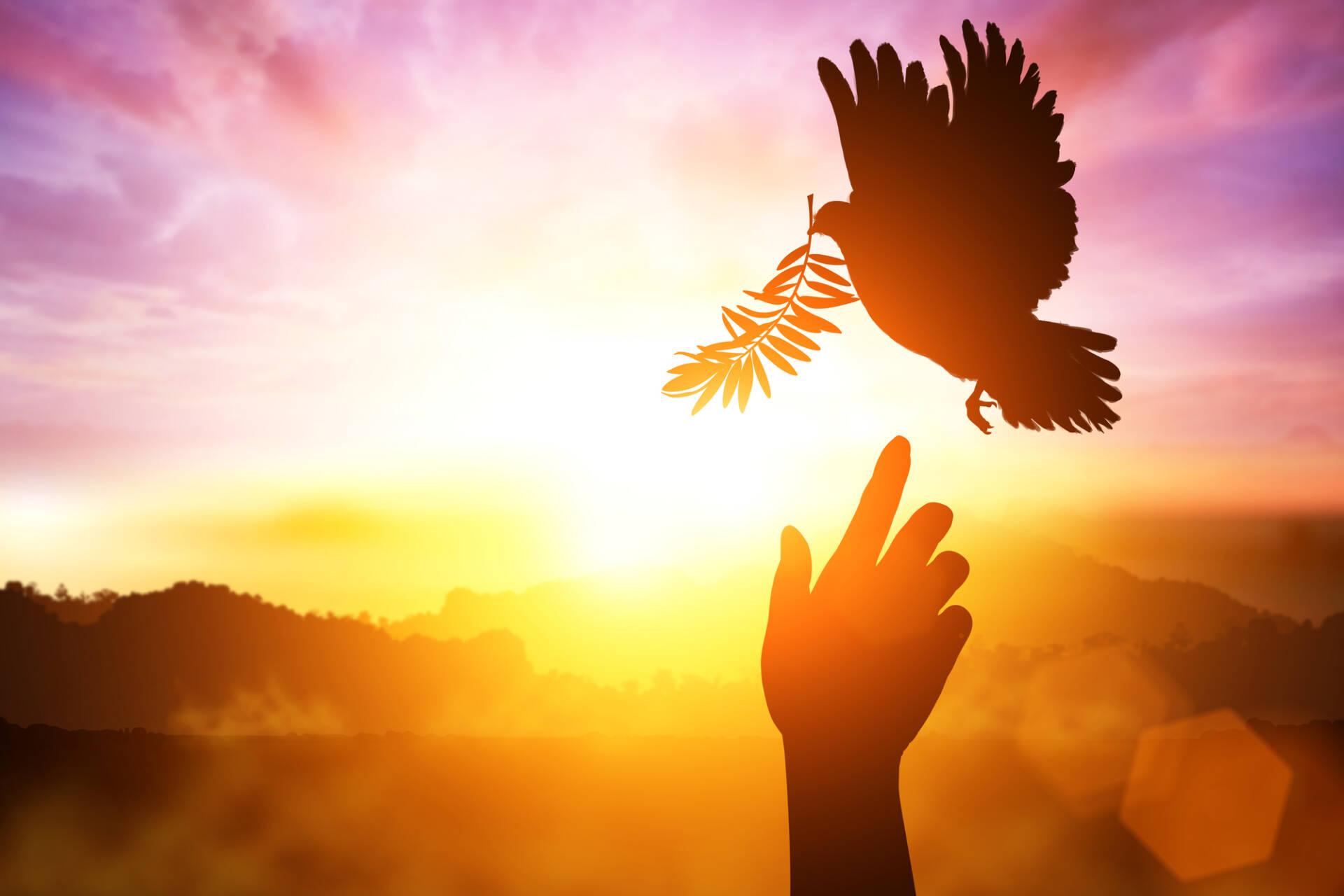 Pentecostés Espíritu Santo